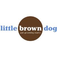 littlebrowndogsquare